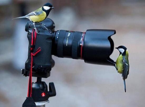 kamera05-24
